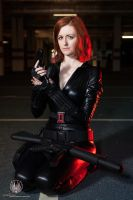 Wipe the Red from my Ledger - Black Widow by faramon