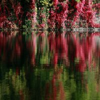 aUTOMNE by TofstoFs
