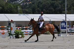 Show Jumping Stock 012 by Champi-Stock