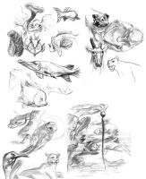 Zoo sketches by bolognafingers