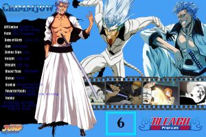 Grimmjow Profile by Revy11