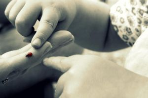 Ladybird Touch by TwentyFiveDays