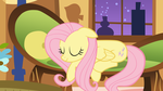 Peace and Quiet - Fluttershy by AtomicGreymon