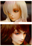 BJD: Errol and Cyril by gomimushi