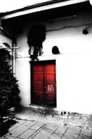 Red Door by PaperBot