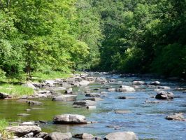 Tohickon Creek 5 by wax-wing