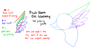 Fruit Bloom Anatomy Things by Kuro-Creations