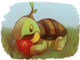 turtwig by Etomo
