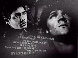 SPN - It's never too late by DaaRia