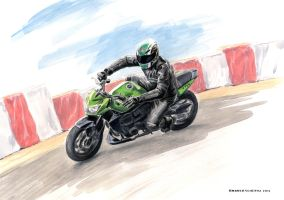 Roby on Kawasaki Z750 by AndreaSchepisi