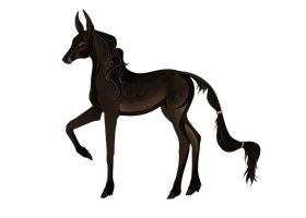 Lancaeriel | Doe | Blackwood Witch by CountryGirl-at-heart