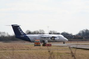 G-LUXE BAe 146-301 by tammyins