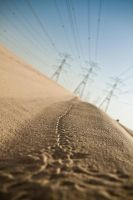 Tracks by nnPhoto