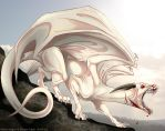 Albino dragon by IsisMasshiro