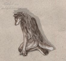 Wolf's Back by m-lupus