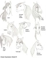 Dream Expression Sheet 1 by DreamHorseStudios