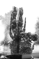 cactus tree by easycheuvreuille