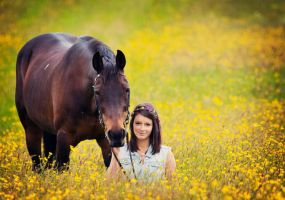 summer equine shoot by equinelovex