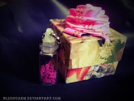 happiness casket by Bledhgarm