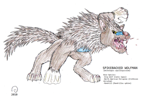 HB: Spikebacked Wolfman by FawkesTheSkarmory