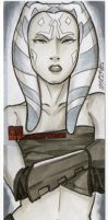 Star Wars Clone Wars Cards 03 by martheus