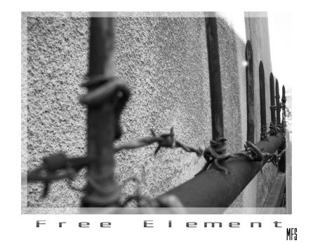 Free Element by mfs-inreality