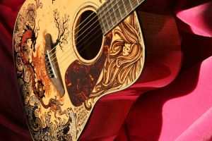 Guitar Details by vivsters