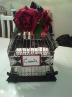 Bird Cage Wedding Card holder by Mokulen22