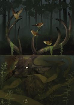 Water Deer by madnessdemon