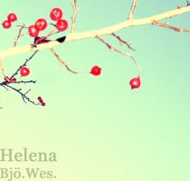 Berries on a tree by Helenabw
