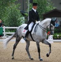 Dressage 17 by equinestudios