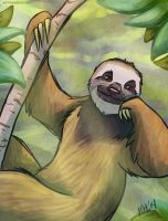 Sloth by Greykitty