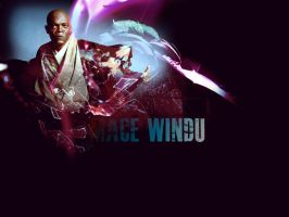 Mace Windu by GracieKane