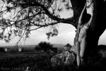 windmills Co10 BW by PeterLime