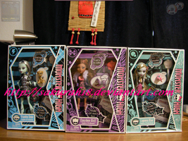 Monster High Dolls by SakuraH18