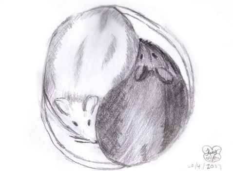 Yin-Yang Mice by MoUsY-spell-checker