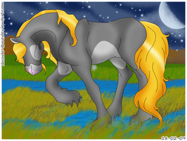 A Blond Horse by Decode-That