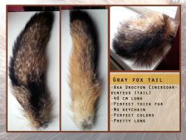 SOLD Gray Fox tail by Foxydermy