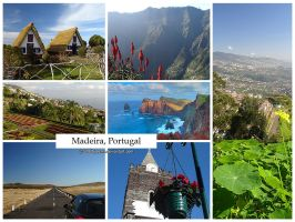 Postcard - Madeira, Portugal by jpgmn