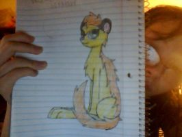 penguins of madagascar oc tammy the ferret by accailia118