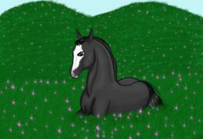 a legend  contest enty by surpricelover