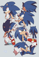 SONIC THE HEDGEHOG by krsnprpr