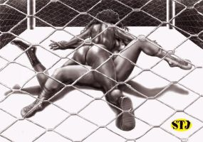 MWBO:Cage Wrestling by drewhammond