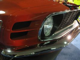 Mustang by QuanticChaos1000