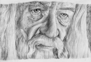 Gandalf The White Portrait by Ori-Clayfoot