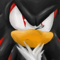 Shadow the Hedgehog by GirGrunny