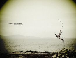 _Be Free by chipil