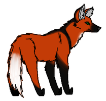 Maned Wolf Drawing (2011) by CherrySapphire