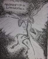 Archaeopteryx lithographica by PonderosaPower