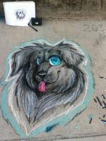 Chalkdog by Koiley